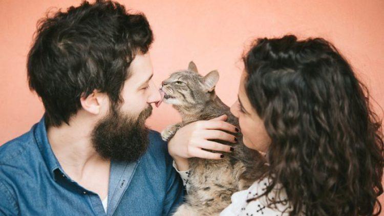 Las nuevas familias, ¿con mascotas y sin bebés?