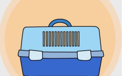 Sobre trasportines, tamaños y PPP
