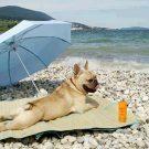 perro-en-la-playa-tomando-el-sol.jpg