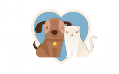 Amigos de Traveldog